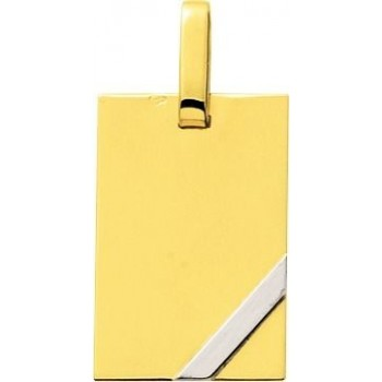 Pendentif HANNIBAL or jaune or blanc 750 /°° dimensions 23 mm x 15 mm